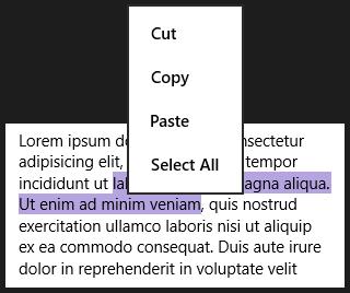 16-XAML-TextMenuDefault